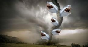 Tornado di squali