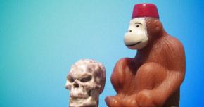 il-bureau-classe-creativa-scimmie-poeti
